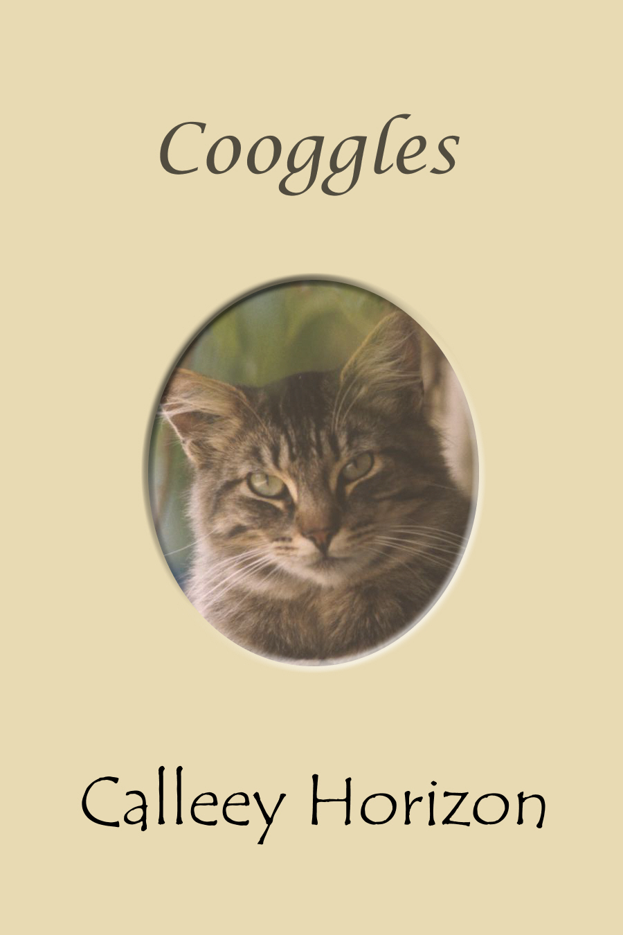 Cooggles Front Cover